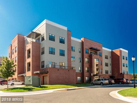 Garden 1-4 Floors, Contemporary - LORTON, VA (photo 1)
