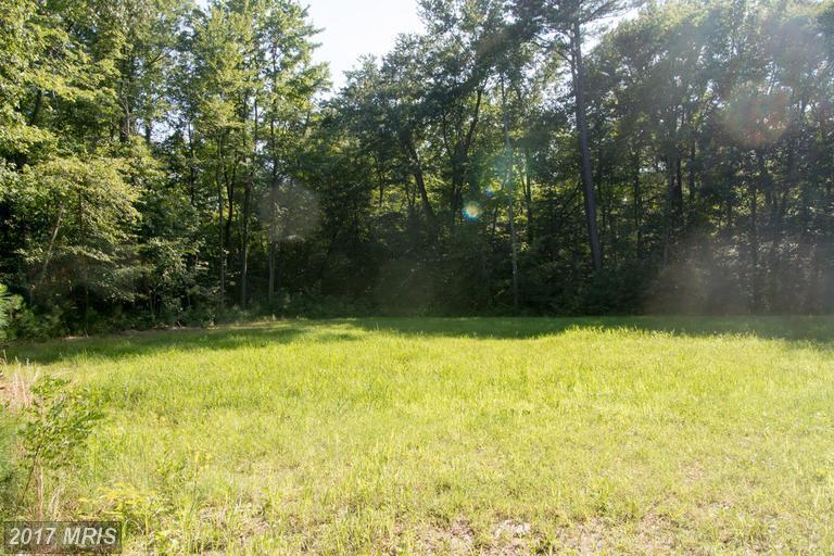 Lot-Land - GRASONVILLE, MD (photo 1)