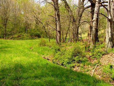 Land - Pearisburg, VA (photo 2)