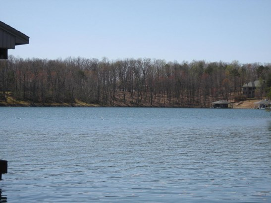 Land (Acreage), Lots/Land/Farm - Huddleston, VA (photo 1)