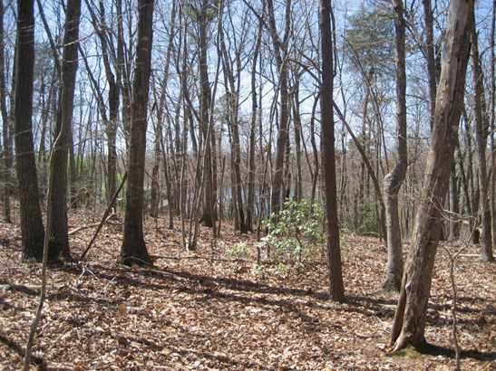 Land (Acreage), Lots/Land/Farm - Huddleston, VA (photo 2)