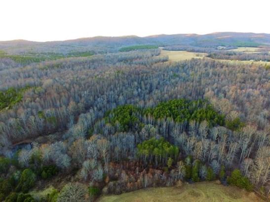Land (Acreage), Lots/Land/Farm - Rocky Mount, VA (photo 4)