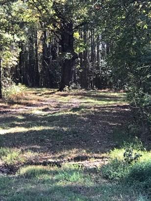 Land/Lots - South Hill, VA (photo 3)