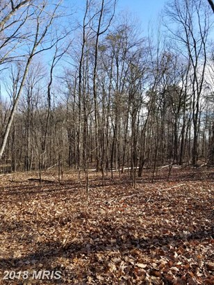 Lot-Land - HEDGESVILLE, WV (photo 4)