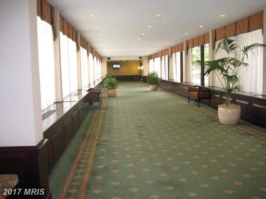 Hi-Rise 9+ Floors, Traditional - FALLS CHURCH, VA (photo 4)