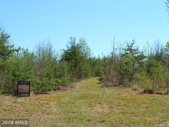 Lot-Land - GOLDVEIN, VA (photo 1)