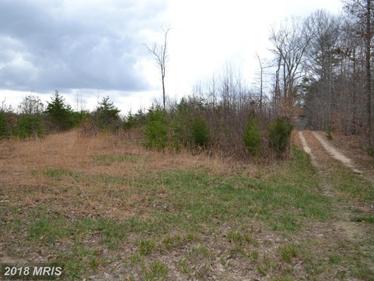 Lot-Land - GOLDVEIN, VA (photo 2)