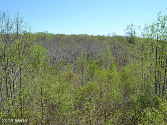 Lot-Land - GOLDVEIN, VA (photo 3)