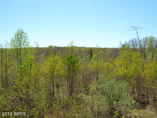 Lot-Land - GOLDVEIN, VA (photo 4)