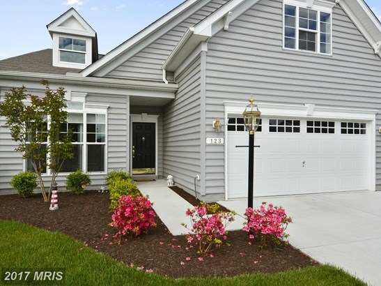 Contemporary, Detached - CENTREVILLE, MD (photo 2)