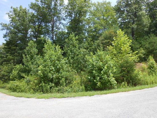 Lot, Lots/Land/Farm - Callaway, VA (photo 3)