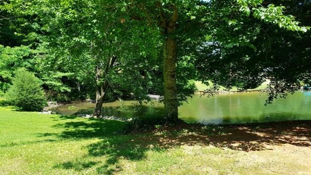 Residential, Cottage - Wirtz, VA (photo 2)