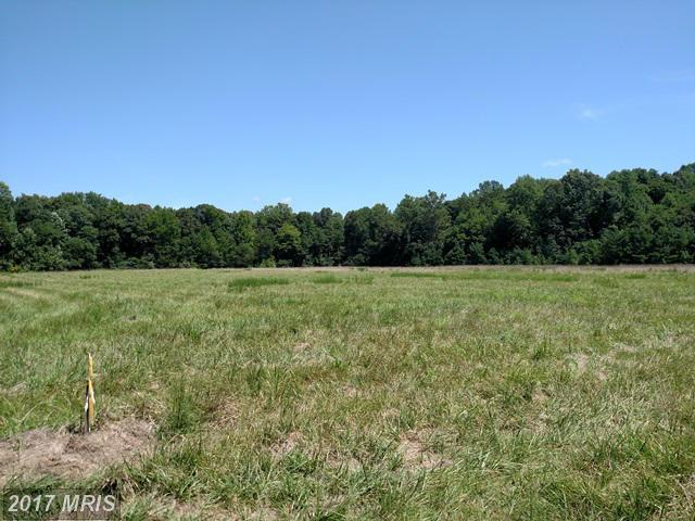 Lot-Land - TRAPPE, MD (photo 2)