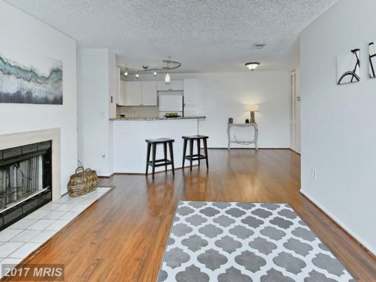 Garden 1-4 Floors, Contemporary - RESTON, VA (photo 1)