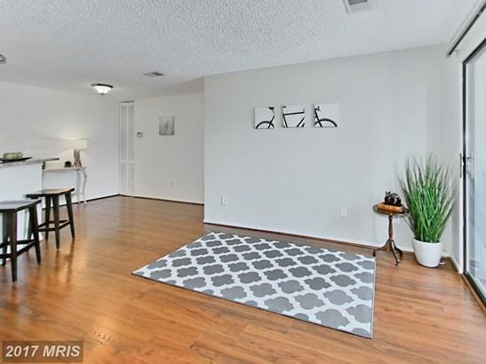 Garden 1-4 Floors, Contemporary - RESTON, VA (photo 3)