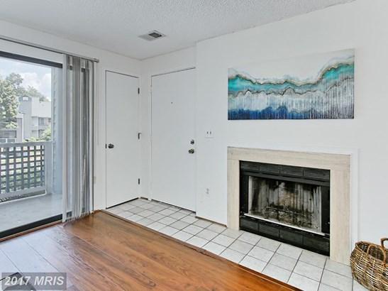 Garden 1-4 Floors, Contemporary - RESTON, VA (photo 4)