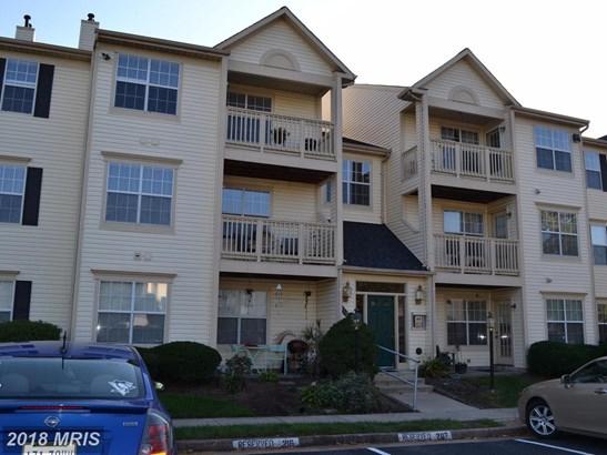 Garden 1-4 Floors, Contemporary - MANASSAS, VA (photo 2)