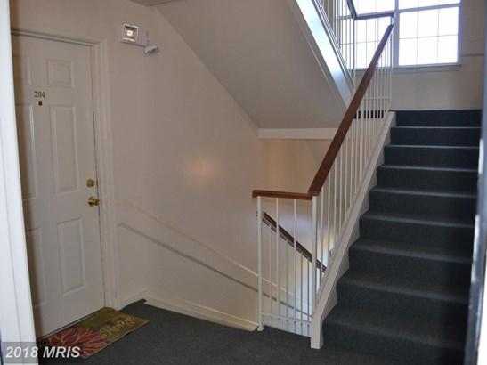 Garden 1-4 Floors, Contemporary - MANASSAS, VA (photo 4)
