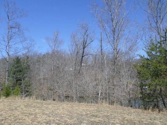 Lot, Lots/Land/Farm - Hardy, VA (photo 3)