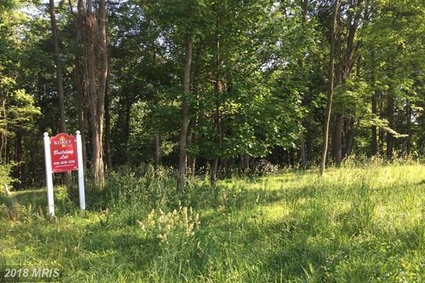 Lot-Land - BALDWIN, MD (photo 2)