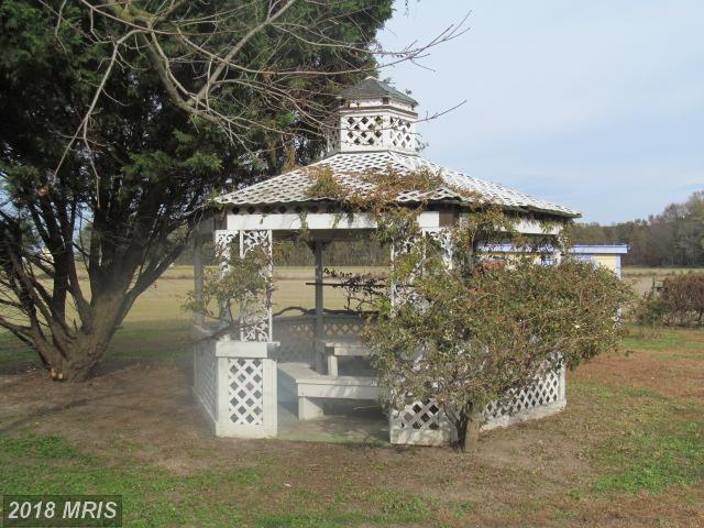 Farm House, Detached - FEDERALSBURG, MD (photo 5)