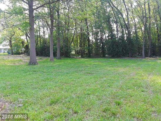 Lot-Land - PERRYVILLE, MD (photo 2)
