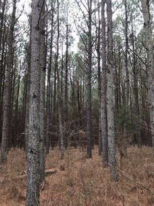 Land/Lots - Boydton, VA (photo 1)