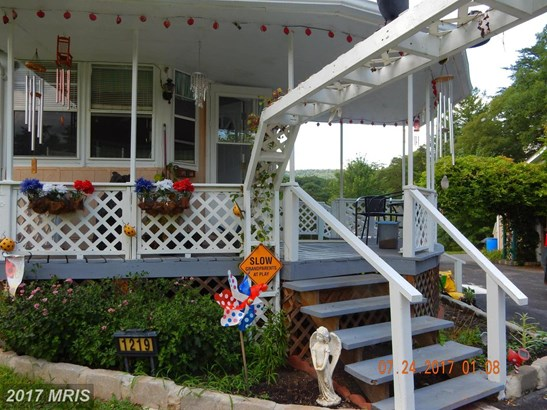 Rancher, Double Wide - HEDGESVILLE, WV (photo 3)