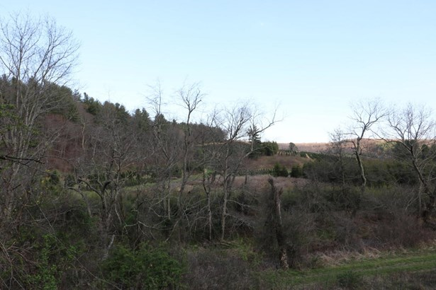 Tree Farm, Lots/Land/Farm - Copper Hill, VA (photo 3)