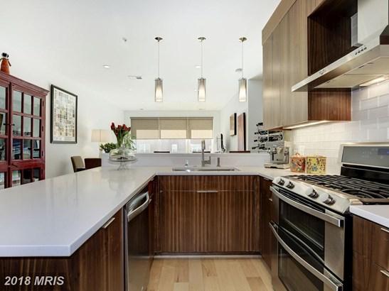 Garden 1-4 Floors, Contemporary - WASHINGTON, DC (photo 5)