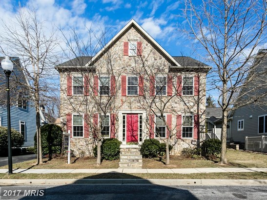 Traditional, Detached - BALTIMORE, MD (photo 1)