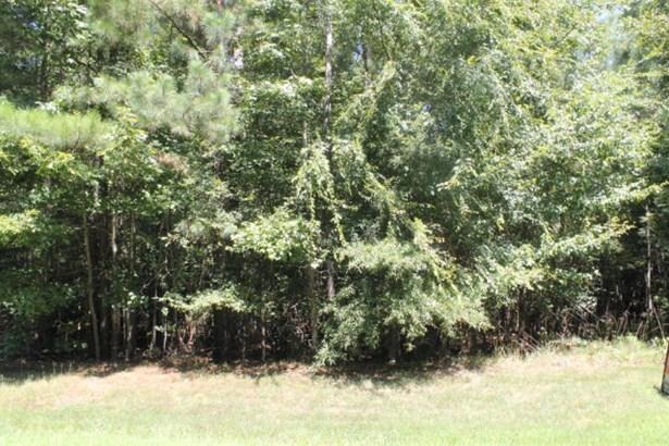 Land/Lots - Boydton, VA (photo 3)