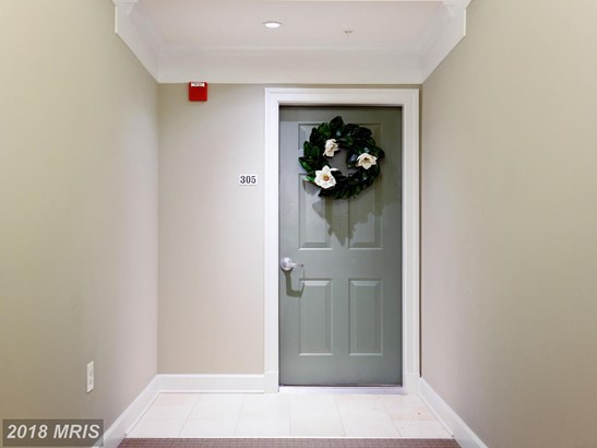Garden 1-4 Floors, Contemporary - WOODBRIDGE, VA (photo 3)