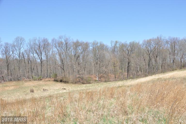 Lot-Land - FULTON, MD (photo 4)