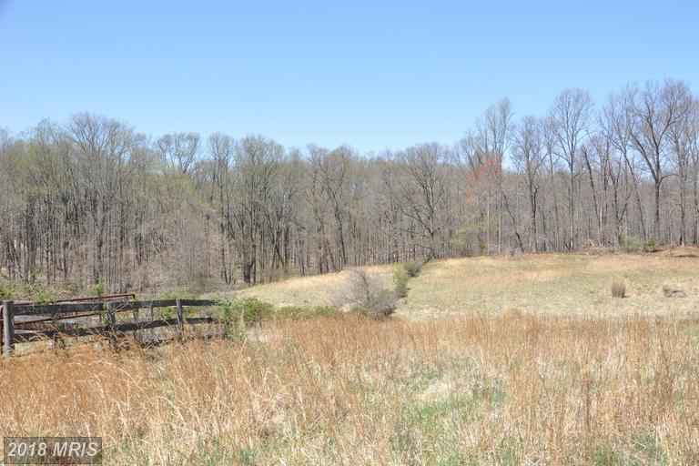 Lot-Land - FULTON, MD (photo 5)