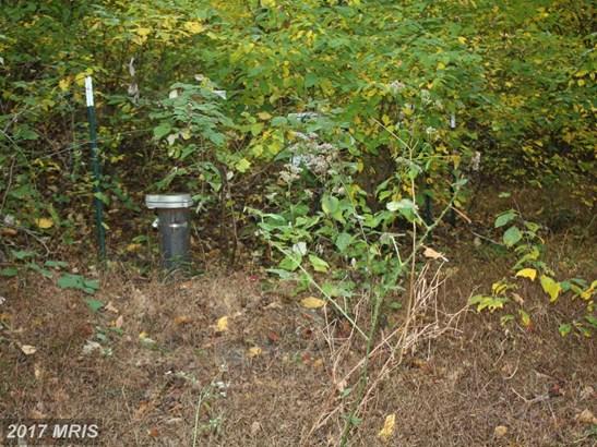 Lot-Land - SMITHSBURG, MD (photo 3)