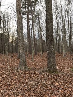 Land/Lots - Keysville, VA (photo 2)