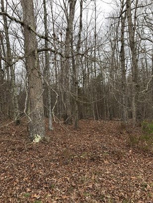 Land/Lots - Keysville, VA (photo 3)