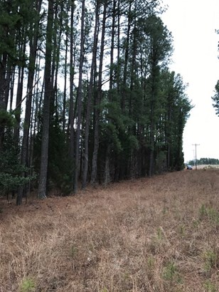 Land/Lots - Keysville, VA (photo 5)