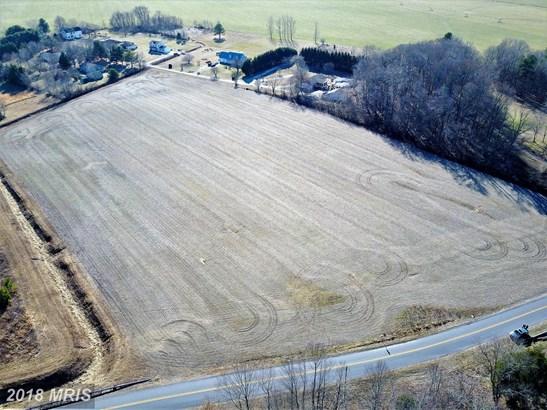 Lot-Land - RIDGELY, MD (photo 1)