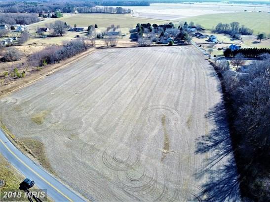 Lot-Land - RIDGELY, MD (photo 4)
