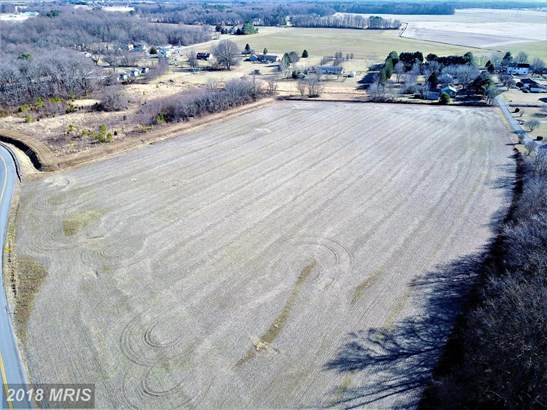 Lot-Land - RIDGELY, MD (photo 5)