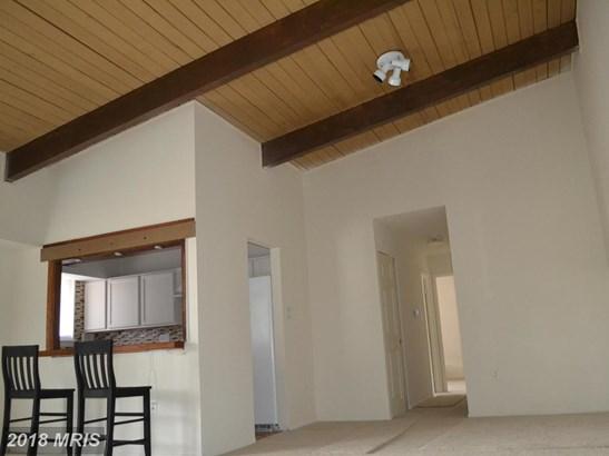 Garden 1-4 Floors, Other - BELTSVILLE, MD (photo 4)