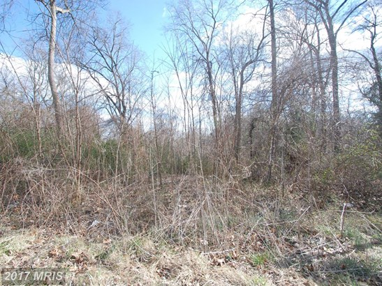 Lot-Land - CONOWINGO, MD (photo 1)