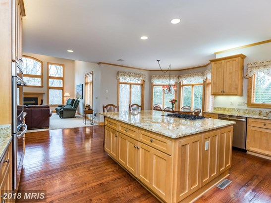 Craftsman, Detached - ELLICOTT CITY, MD (photo 3)