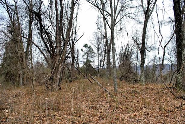 Land - Riner, VA (photo 1)