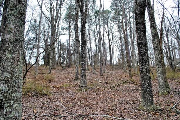 Land - Riner, VA (photo 2)