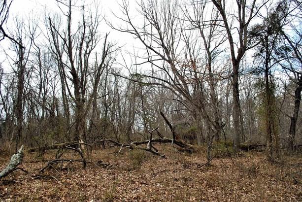Land - Riner, VA (photo 3)