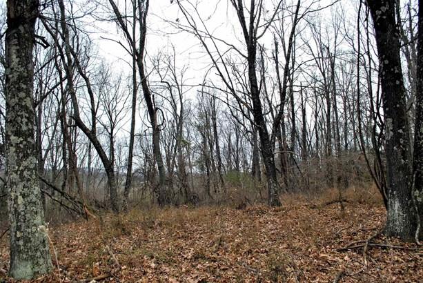 Land - Riner, VA (photo 5)