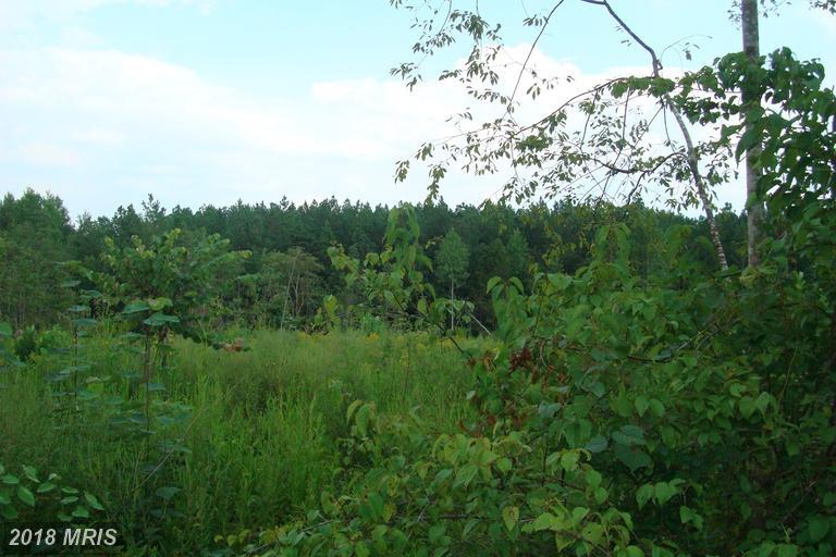 Lot-Land - UNIONVILLE, VA (photo 3)